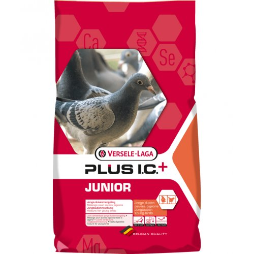 Jungtaubenfutter Junior Plus I.C. - Versele Laga